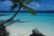 Palma_Maldive_001