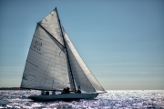 cannes_regatta_royale_2019-3320