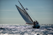 cannes_regatta_royale_2019-3336