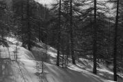 gpphoto_monti_della_luna_002