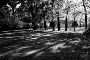 autunno_monza_2015_001c